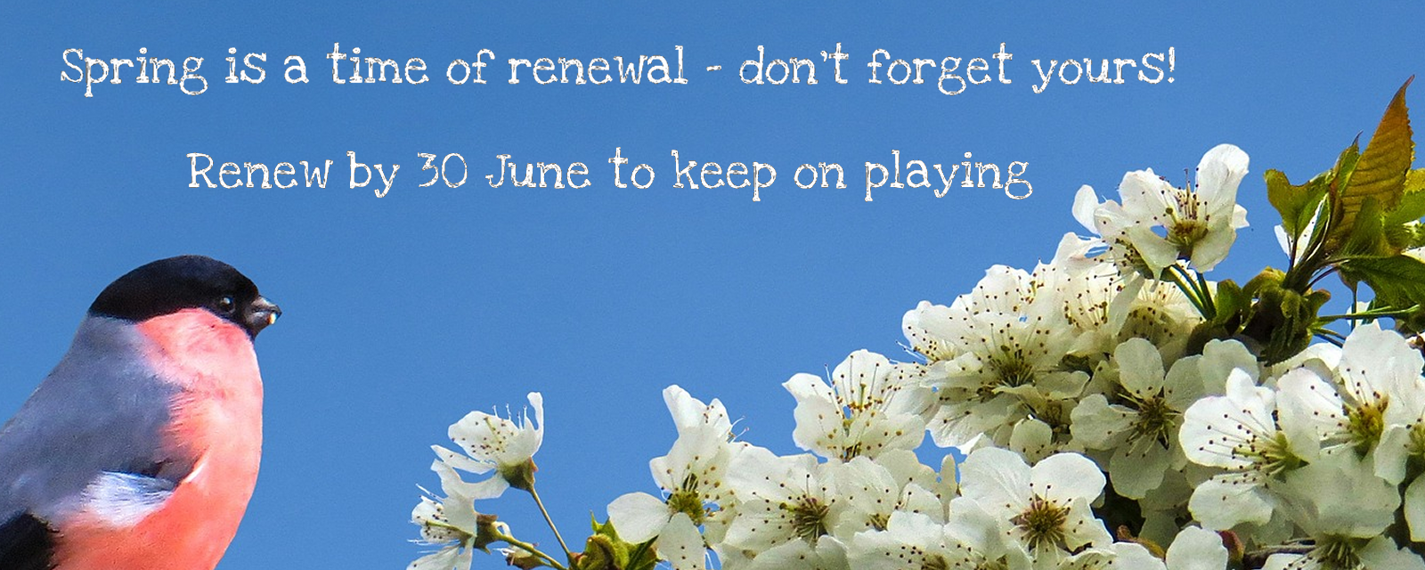 Reminder to renew membership by 30 June